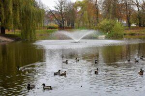 Fontanna w parku w Lwówku Śląskim