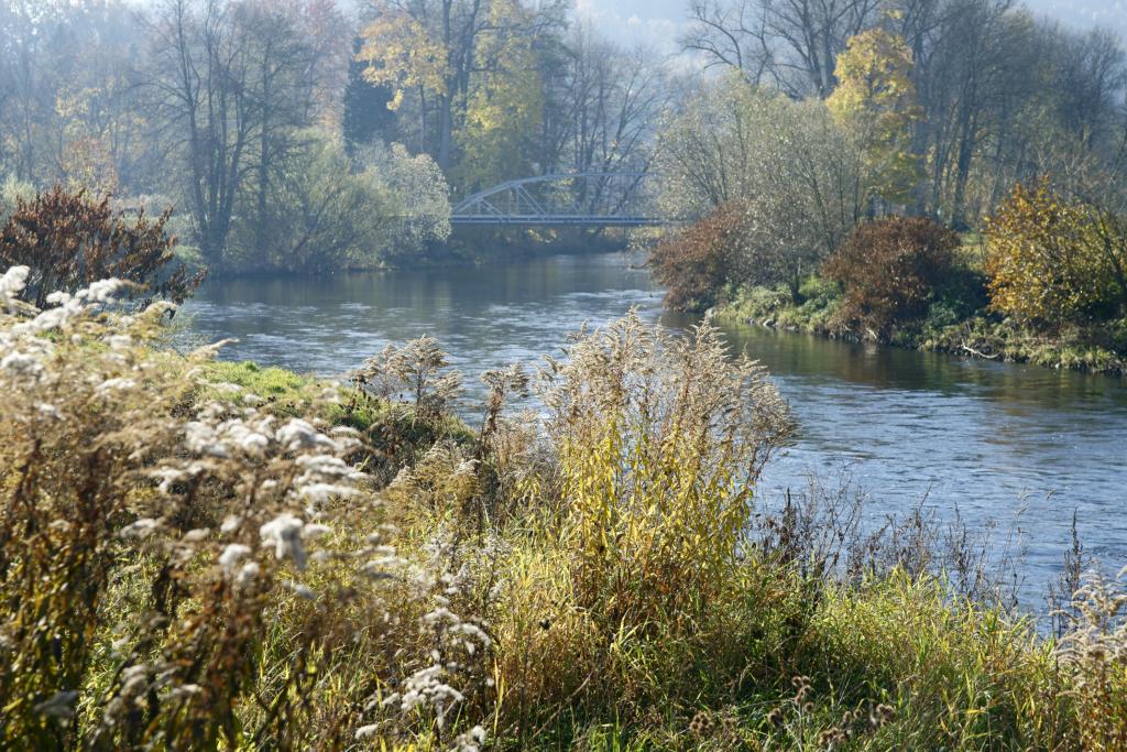 Rzeka Bóbr. Zdjęcie Marka Chwistka