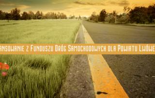 baner ilustrujący artykuł pokazujący fragment drogi asfaltowej