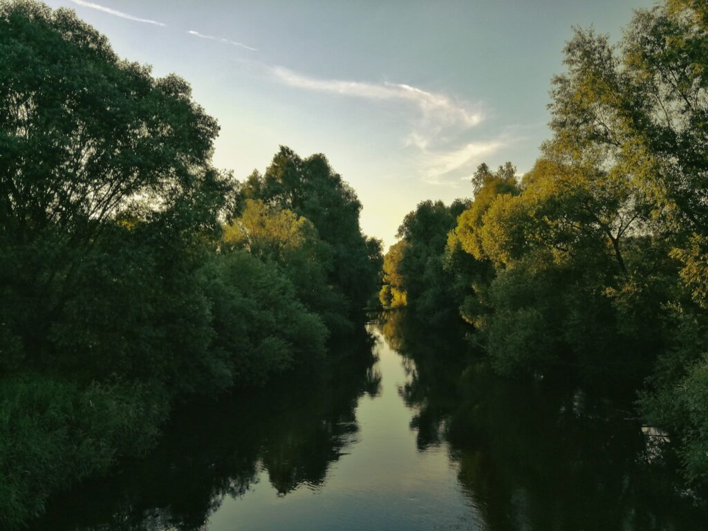 Zdjęcie Agnieszki Wolskiej przedstawia rzekę Bóbr w otoczeniu drzew