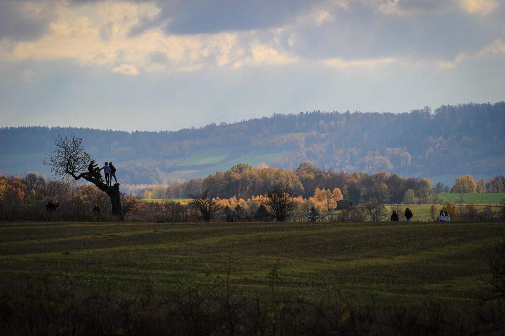 Widok na góry Karkonosze z Tarczyna