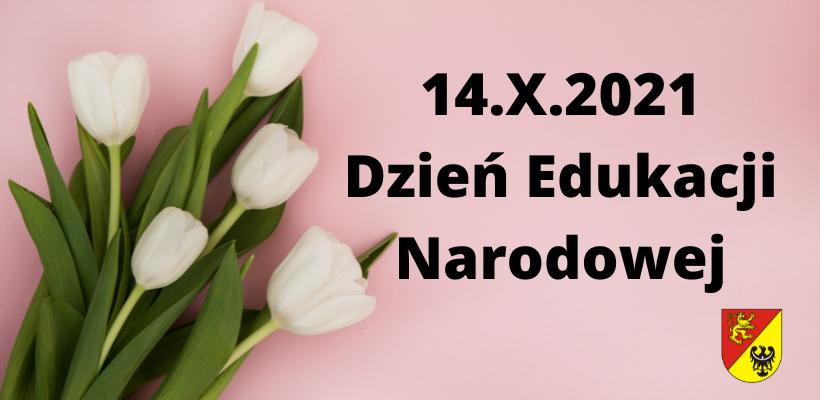 białe tulipany na różowym tle z napisem Dzień Edukacji Narodowej
